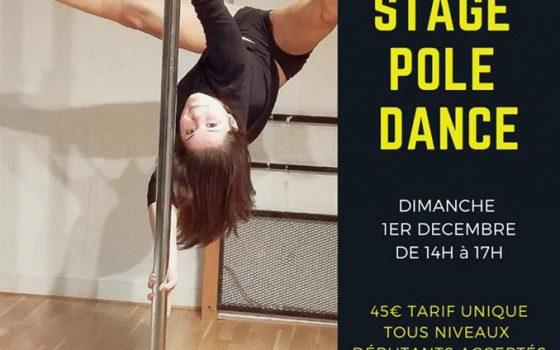 Stage Pole dance