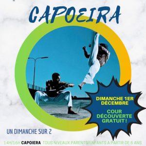 Stage Capoeira